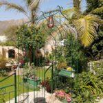 15 Main garden-H900